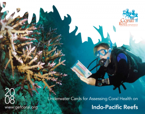 0807 Indo Pacific Underwater ID Cards