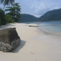 Tropical marine ecosystems most at threat from human impact