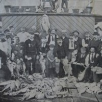 History's lesson reveals depth of fish catch decline