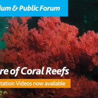 The Future of Coral Reefs (Canberra)