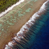 The secret life of spurs and grooves: understanding the geomorphology of the fore reef