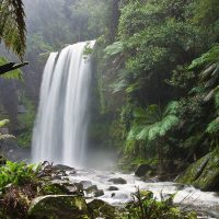 The ecological benefits and economic costs of protected areas