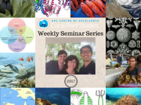 Another successful 'Coral CoE Seminar Series' comes to a close