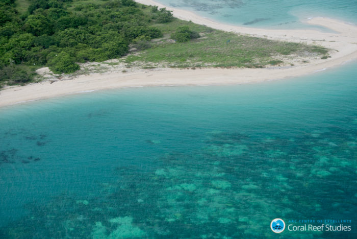 Aerial survey images from Cape York - Mossman in northeast Australia, March 2016. Credit: ARC CoE for Coral Reef Studies/ Terry Hughes