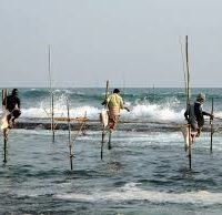 Unpacking the 90% – a comprehensive look at small-scale fisheries