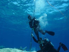 Diving for data: What this oceanographer is learning from coral reefs