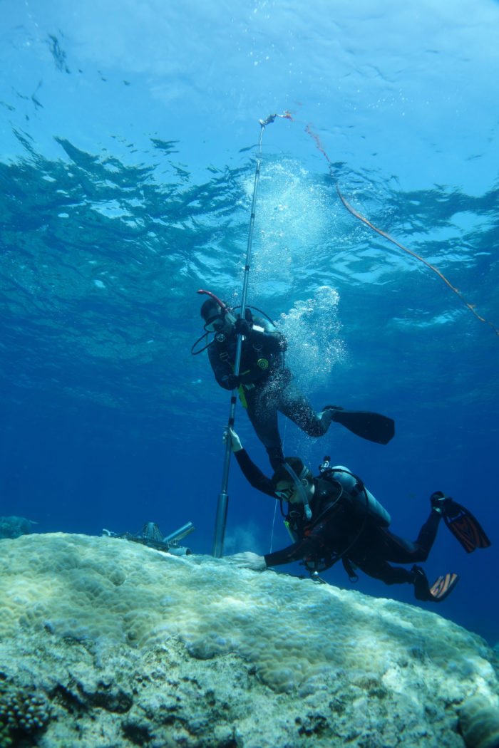 Dr DeCarlo collects core samples from living colonies on the Great Barrier Reef as part of his postdoctoral research with CoralCoE.