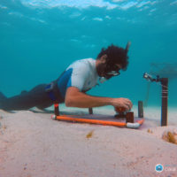 Coral reefs protect coasts from severe storms