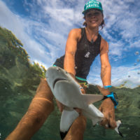 Investigating baby sharks in a changing world