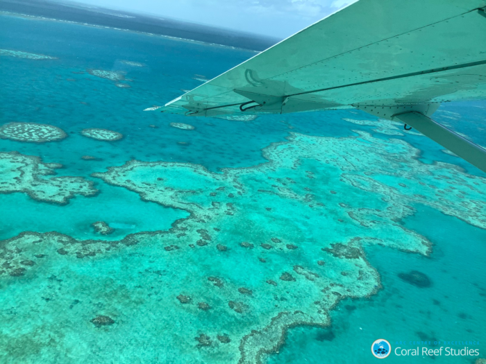 The Great Barrier Reef is just one highly threatened ecosystem that successive Australian governments continue to shield from an in Danger listing.