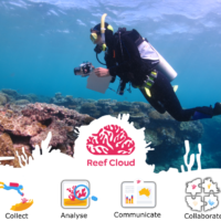 Towards integrating global coral reef monitoring using artificial intelligence