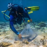An emerging tool to quantify fish resources on coral reefs
