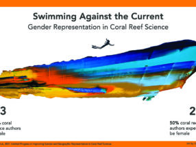 There's still a long way to go to bridge the gender and economic gaps in coral reef science